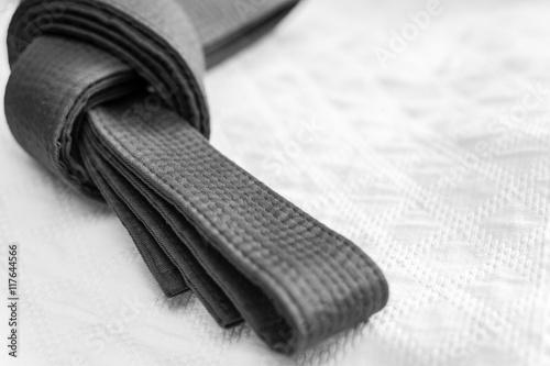 Judo, karate or aikido belt on white kimono Poster