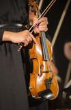 violon/jeune fille tenant un violon