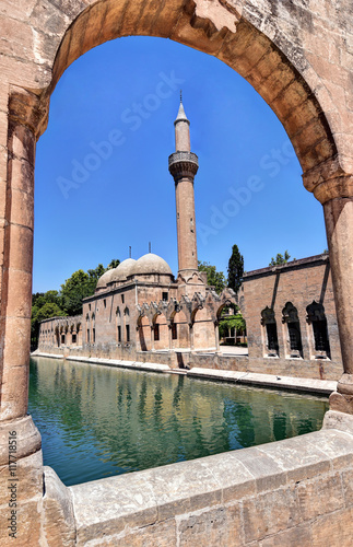 The Pool of Abraham in Sanliurfa is filled with carp fish with protected status Poster
