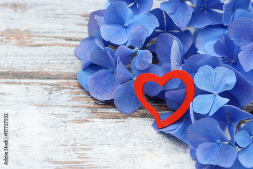 Zdjęcia na płótnie, fototapety, obrazy : blue flower and red heart lying on wood