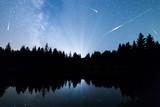 Fototapety Falling stars Lake pine trees silhouette Milky Way
