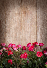 red roses on wooden board © AlenKadr