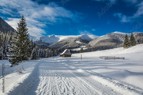 Chocholowska Valley at sunrise in winter, Tatra Mountains, Poland