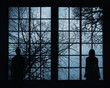 Silhouette of a young couple standing and looking through big window at tree crown branches background. Couple concept relationship background. - 117766389