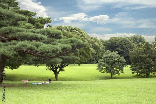 Poster parkta dinlenen insanlar