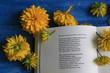 Постер, плакат: Цветы и книга