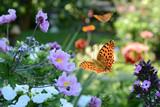 Fototapety Blumen 731