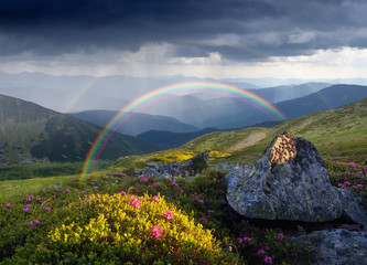 Summer landscape with rainbow and flowers in the mountains