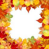 Autumn background with colorful leaves frame