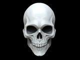 White clay skull - 3...