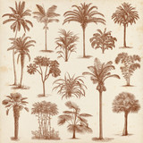 Fototapety Vintage hand drawn palm trees set