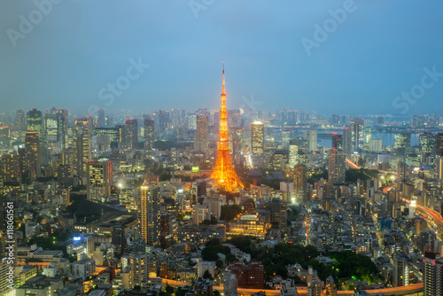Tokyo tower and Tokyo city skyline in Tokyo, Japan Poster