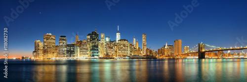 Downtown Manhattan skyline Poster