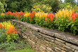 Flower Garden with Stone Wall