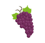grapes purple food fruit con. Isolated and flat illustration