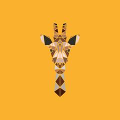 Abstract polygonal triangle giraffe. Geometric graphic giraffe portrait isolated on orange background. © greens87