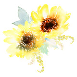 Watercolor sunflowers - 118172546