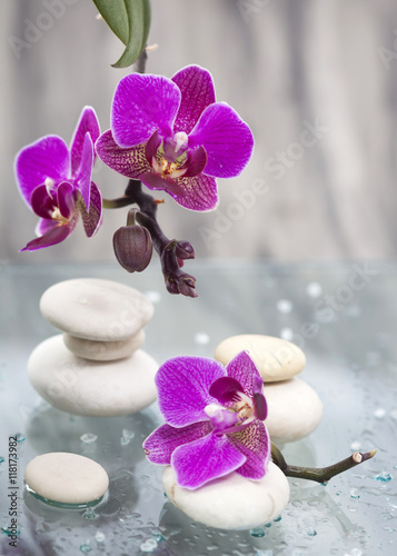 Papiers peints Zen Spa still life with pink flowers and white zen stone