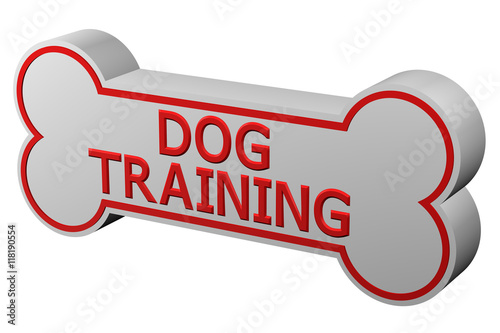 Poster Concept: dog training. 3D rendering.