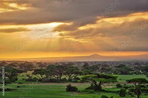 Staande foto Afrika African savannah in Amboseli National Park