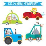 Funny animals on transport. Monkey, leopard, rhino, dog. Vector illustration on white background.  Kids cartoon.