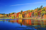 autumn colorful trees under morning sunlight reflecting in tranquil river