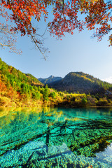 Fantastic view of the Five Flower Lake among colorful fall woods © efired