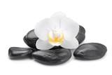 zen basalt stones and  orchid - 118337173