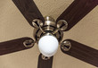 Wooden ceiling fan with light