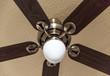 Wooden ceiling fan with light