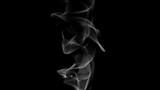 Cigarette Smoke abstract