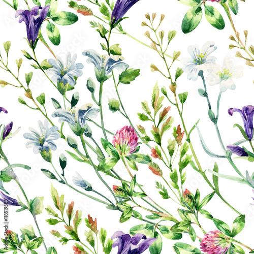 Fototapeta Watercolor wild flowers seamless pattern.