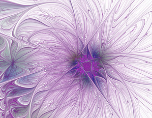 Abstract beautiful purple flower on white background