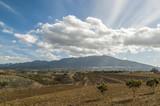 Campos de Alhaurín el Grande