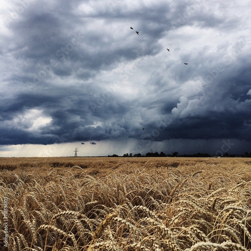 thunderstorm, dark clouds and rain