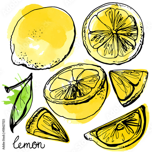 Keuken foto achterwand Vrouw gezicht Lemons black line drawn on a white background. Vector drawing of fruits. Abstract spots. Colored lemons.