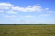 High voltage transmission powerline