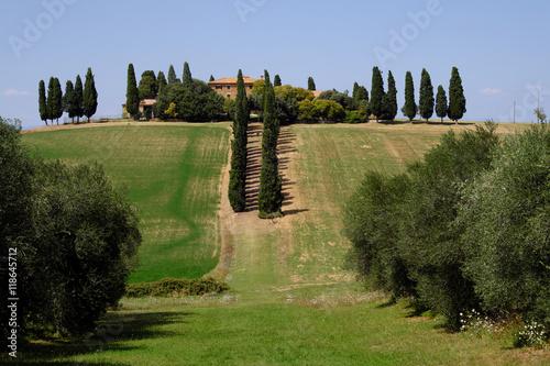 Fototapeta Paysage Toscane