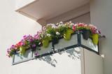 balcon fleuri - 118693799