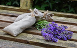 Fresh lavender flowers and lavender bags on rustic wood.