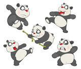 Illustration of a set of Funny Panda Bear. Cartoon Character