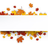 Fototapety Autumn background with maple leaves.