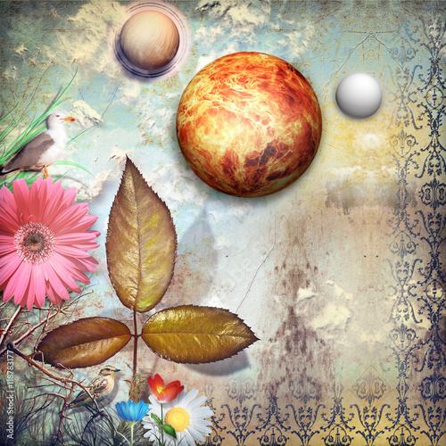 Zdjęcia na płótnie, fototapety, obrazy : Fairyland with colored flowers