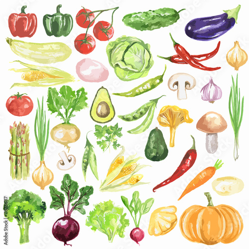 Watercolor vegetables set. Fresh and healthy vegetables on white background. Great source of vitamin. - 118786117