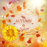 Background on a theme of autumn. Sale. EPS 10