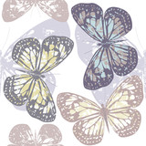 Seamless pattern with cute colorful butterflies isolated on whit