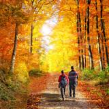 Fototapety Wandern in der Natur im Herbst