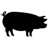 Pig Silhouette - 118847360