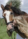 knappe blonde jongvolwassen meid knuffelt met haar paard