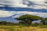 Piękny krajobraz afrykański na tle Kilimandżaro. Ke